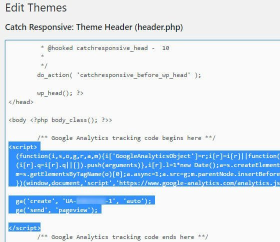 Wordpress tracking code in to your website manually